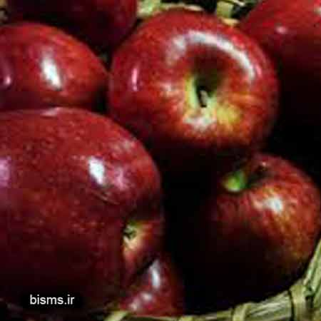 سیب، خواص سیب