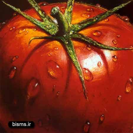 گوجه فرنگی ، خواص گوجه فرنگی