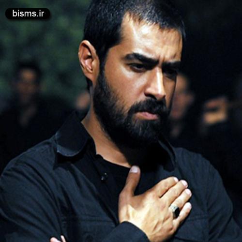 عکس دیده نشده از شهاب حسینی در کنسرت رضا یزدانی