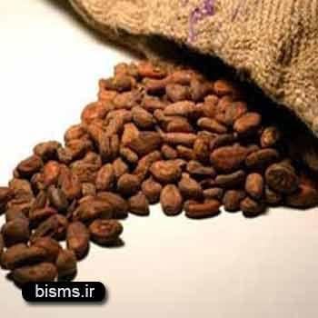 کاکائو،خواص کاکائو,کاکائو در بارداری