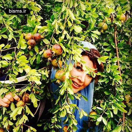 عکس جالب و دیده نشده شهره سلطانی و مرجان شیرمحمدی